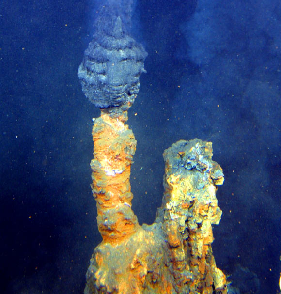 a hydrothermal vent off the coast of New Zealand. Image from NOAA